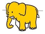 Omalovánka Slon