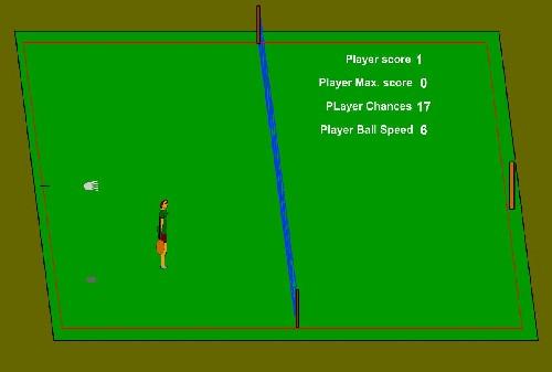 Online hra Badminton