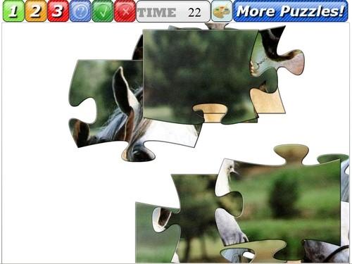 Online hra Skládačka koně